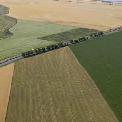 Собственицит на земеделските земи са предимно хора над 55 г., като размерът на притежаваната от тях земя е средно около 20 дка