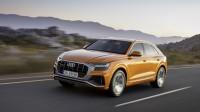 Audi обмисля дори и Q9?