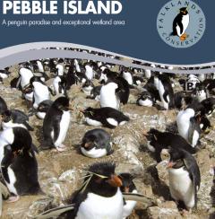Продава се остров, обитаван от пет вида пингвини