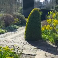 Кембриджския университет предлага виртуални разходки в ботаническата си градина